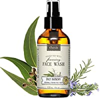 Facial Wash Daily Harmony for Oily / Combination / Problem Skin from Thesis Beauty