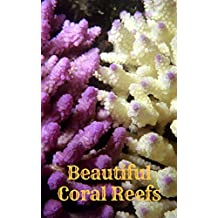 Beautiful Coral Reef Fish 2