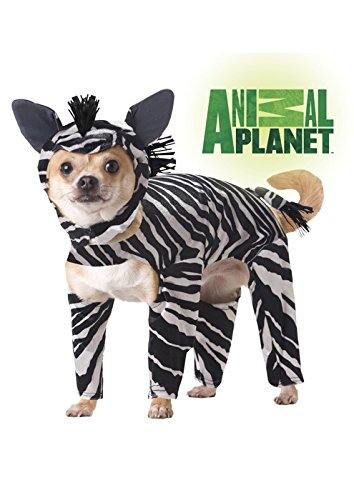 [Animal Planet PET20100 Zebra Dog Costume, Small] (Affordable Costumes)
