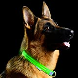 Pet Industries Metal Buckle LED Dog Collar, USB Rechargeable, Available in 7 Colors & 4 Sizes (Large [18.5-23.5''/47-60 cm], Atomic Green)