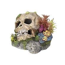 Nobby Calavera con Plantas Acuario Adornos, 13,5 x 13,5 x 10,5 cm