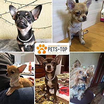 Westie Strass dehnbar Geschenkbox One PETS-TOP Hundehalsband elastisch verstellbar Chihuahua