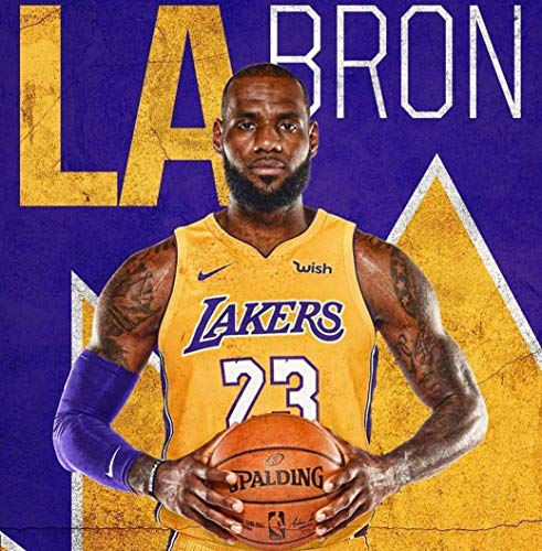Fabric Lebron James (bribase shop Lebron James Los Angeles Lakers Basketball Star Poster 13 inch x 13 inch)