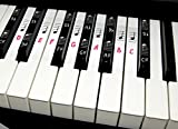Deluxe Piano Keyboard Note Stickers for 49 / 61 / 76 / 88 Keys- Removable- For White and Black Keys, Includes Note Position on Grand Staff (Red)
