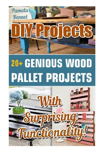 DIY Projects: 20+ Genious Wood Pallet Projects With Surprising Functionality!: (Wood Pallet, DIY projects, DIY household hacks, DIY projects for your home and everyday life, Recycle) (Volume 2)