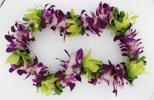 (Hawaiian Fresh Flowers Floral Leis Lei for Retirement, Graduation, Birthdays, Weddings, Achievement Celebration and Any Special Occasions.)