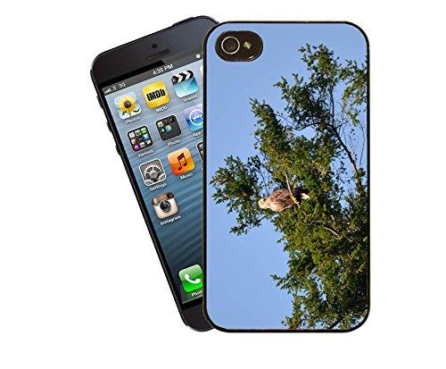 Aigles de mer - 002–Etui-Housse pour Apple iPhone 5/5s/5c-By Eclipse idées cadeaux