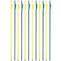 Tihebeyan Flecha de Carbono Inclinado para Adultos, Eje de 30 Pulgadas con Puntos de Campo, Puntas reemplazables para puntería de Arco Compuesto y de Retroceso o Paquete de Caza de 12
