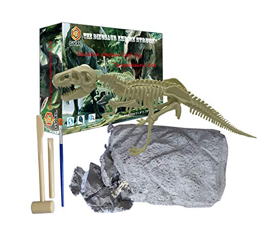 GYXL - Dinosaur Fossil Dig kit, Outdoor Dinosaur Toys,, used for sale  Delivered anywhere in USA