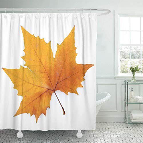 Abaysto Autumn Plane Tree Leaf White Keep Path Single Sycamore Bathroom Decor Shower Curtain Sets with Hooks Polyester Fabric Great Gift ()