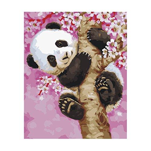panda pictures - 9