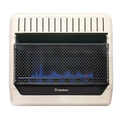 ProCom MG30TBF Ventless Dual Fuel Blue Flame Wall Heater Thermostat Control, 30,000 BTU