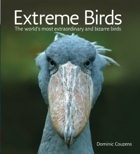 extreme-birds-the-worlds-most-extraordinary-and-bizarre-birds