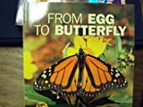 From Egg to Butterfly, Shannon Zemlicka, 0822506661