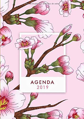 Agenda 2019: Agenda 2019 con diseño de flores, rosado ...