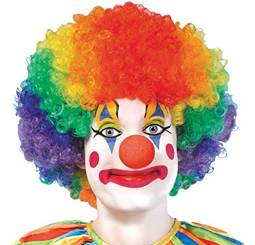 AMSCAN Jumbo Clown Wig Halloween Costume Accessories, Rainbow, One Size -