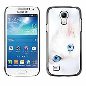 Qstar Arte & diseño plástico duro Fundas Cover Cubre Hard Case Cover para SAMSUNG Galaxy S4 mini VERSION! / i9190 / i9192 ( Cute White Kitten Winter Clean Baby Blue)
