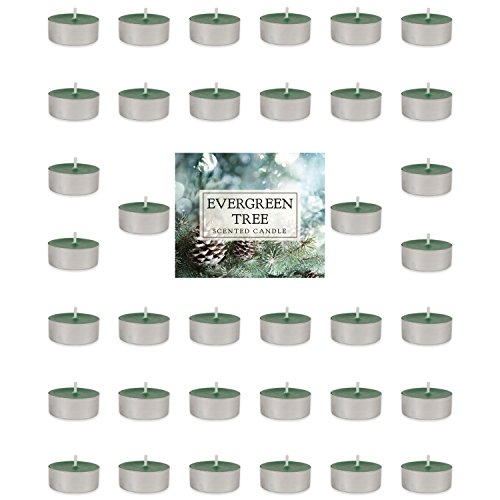 (Home Traditions Highly Scented Tealight Candle (Pack of 36) For Home Décor, Wedding, Party, Holiday, Spa & Aromatherapy - Evergreen)