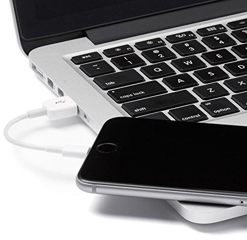 AmazonBasics Lightning to USB A essentia Supplies