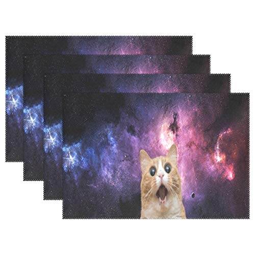 Heat Resistant Placemats for Kitchen Table Mats for Dinning Room,Space Cat Wallpaper Washable Insulation Non Slip Placemat 12x18 inch 4pcs -