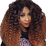 Lissom African American Wigs Ombre Wigs Wavy Curly Long Hair Wigs Heat Resistant Replacement Synthetic Wig For Black Women