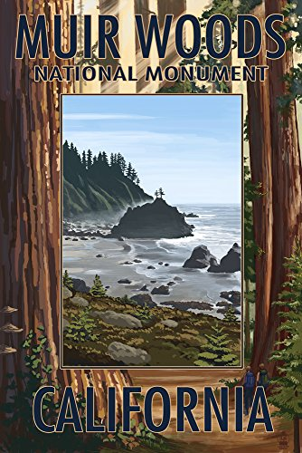 Muir Woods National Monument, California - Trees and Ocean (12x18 Art Print, Wall Decor Travel Poster)