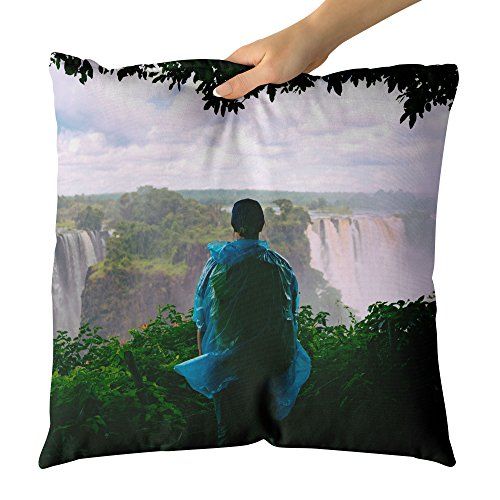 Falls - Decorative Throw Pillow Cushion - Picture Photography Artwork Home Decor Living Room - 18x18 Inch (0F123) ()
