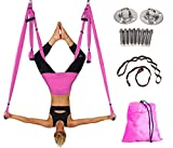 Aerial Yoga Swing Yoga Hammock Kit for Antigravity Exercise with Adjustable Handles Extension Straps (Pink)