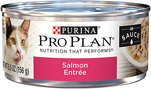 Purina Pro Plan Wet Cat Food; Salmon Entree in Sauce  - (24) 5.5 oz. Cans