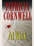 Kindle Store : At Risk (Win Garano Book 1)