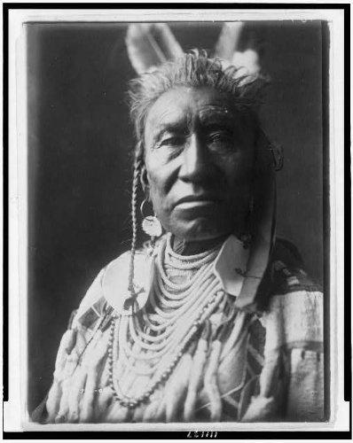 psaroke Indian, popmadour, temple braids, eagle feathers, disk earrings . Size: (Infinite Braid Ring)