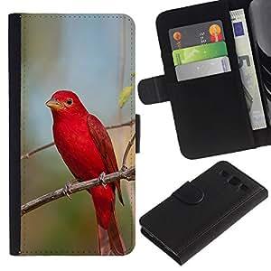 iBinBang / Flip Funda de Cuero Case Cover - Songbird Naturaleza Rama - Samsung Galaxy S3 III I9300