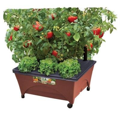 24.5 In. X 20.5 In. Patio Raised Garden Bed Kit with Watering System and Casters in Terra Cotta by CITY PICKERS