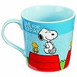 Vandor 85265 Peanuts Snoopy 12 oz Ceramic Mug, Multicolor
