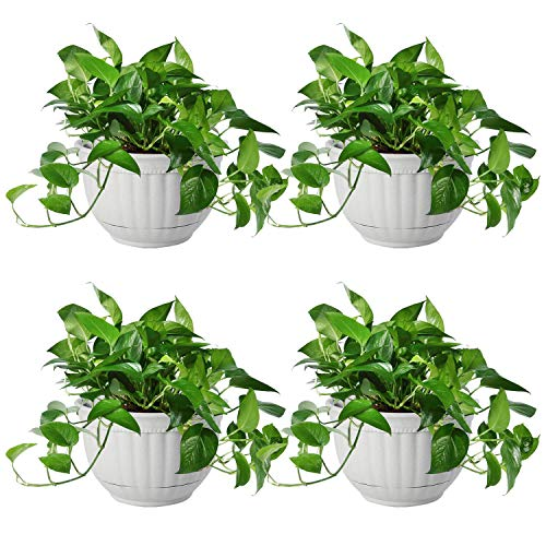 T4U Resin Wall Planter Marble Gray Set of 4, Wall Mounted Garden Plant Flower Pot Basket Container Indoor Outdoor Use for Orchid Herb Aloe Succulent Cactus Home Office Porch Wall Decoration Gift