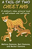 A Tail of Two Cheetahs, Melissa Damone and Bart Damone, 1494253119