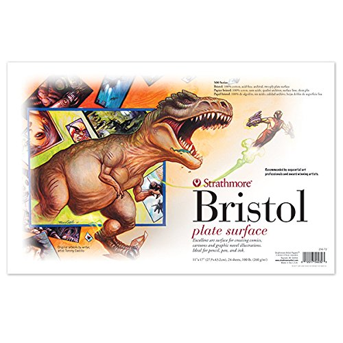 11X17 2 PLY PLATE BRISTOL 24/PACK