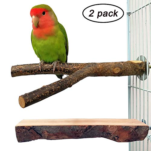 QUMY 2 Pack Parrot Bird Cage Perch Natural Wood Fork Stand Perch Wooden Plaform for Parakeets Cockatiels Conures