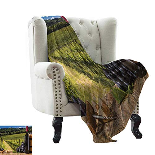 LsWOW Fur Throw Blanket Winery,Red Wine Bottles with Grapes on Timber Board Tuscany Italian Terrace Scenery,Green Blue Brown Soft Summer Cooling Lightweight Bed Blanket 60