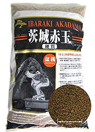 Akadama Standard *2 and Shohin Akadama *1
