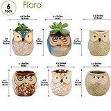 Floro 2.4x2.6 Inch Planter Glaze Ceramic Pot Flower