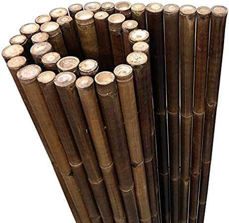 clôture jardin clôture de bambous jardin clôture en 4 tailles Pare-vue en bambou xxl nigra