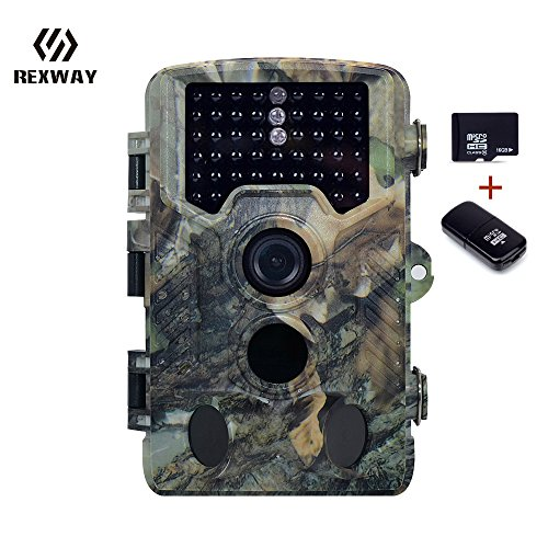 REXWAY Hunting Trail Camera with 16G Card 2.4 LCD Screen 16MP 1080P Infrared Scouting Cameras with Night Vision IP56 Waterproof 65ft Detection Range Super-Fast Trigger Speed (1080P Black)