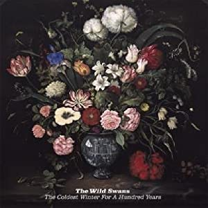 Wild Swans, The - Music And Talk