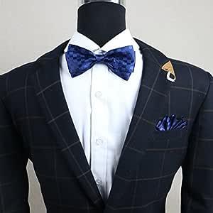 ZLYAYA,corbata,pajarita,Los hombres de negocios vestidos formales ...