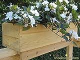 32 inch Standard Rail Top Cedar Flower Box