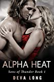 billionaire paranormal dark romance alpha heat sons of thunder mc book 1
