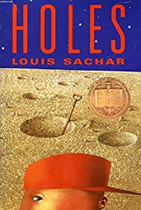 Paperback Holes Book