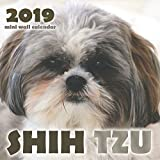 Shih Tzu 2019 Mini Wall Calendar by