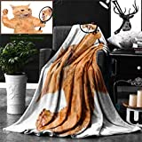 Ralahome Unique Custom Double Sides Print Flannel Blankets Kitten A Cat Looking Into The Mirror Seeing A Reflection A Lion Digital Image W Super Soft Blanketry Bed Couch, Twin Size 70 x 60 Inches